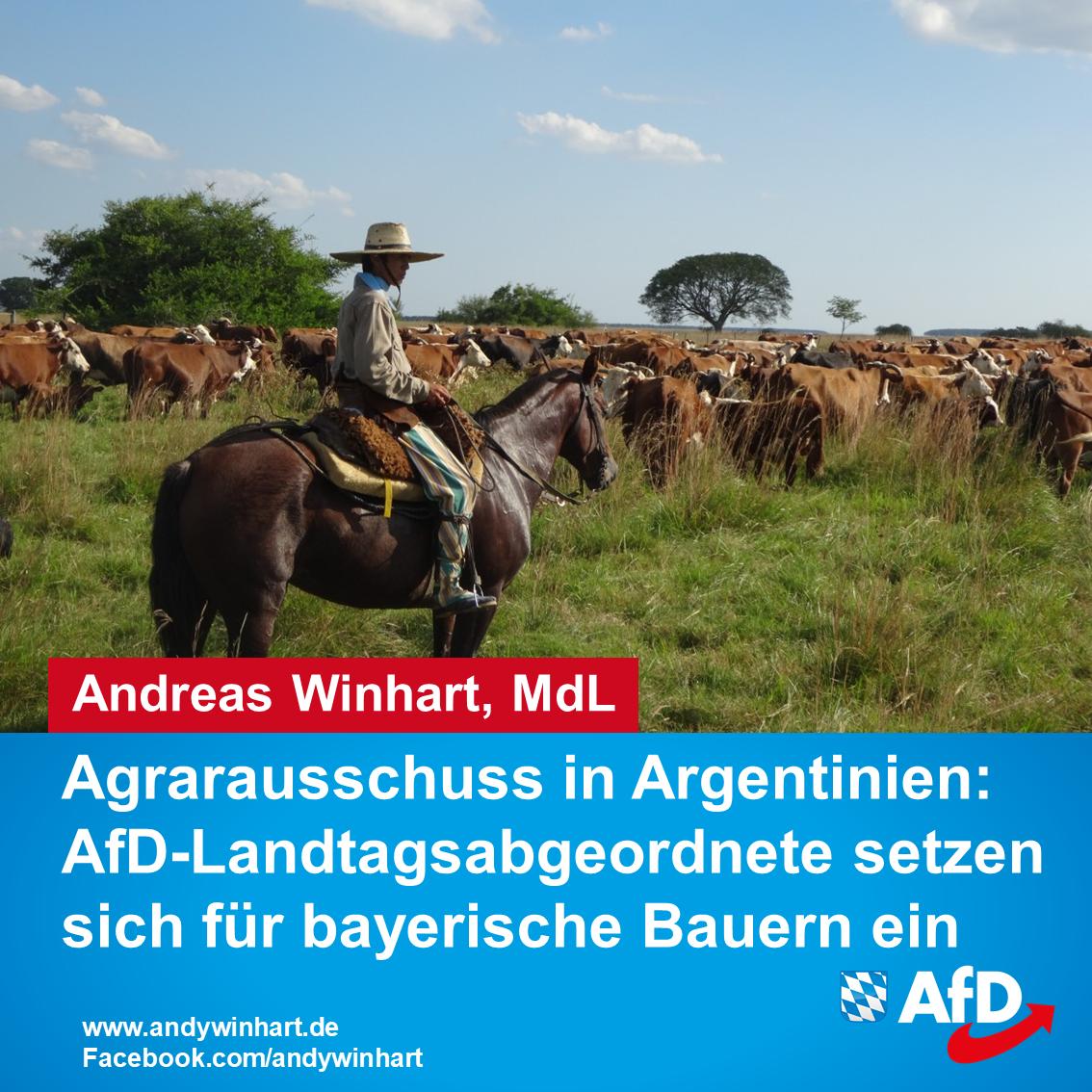 Agrarausschuss in Argentinien: AfD-Landtagsabgeordnete setzen sich für bayerische Bauern ein