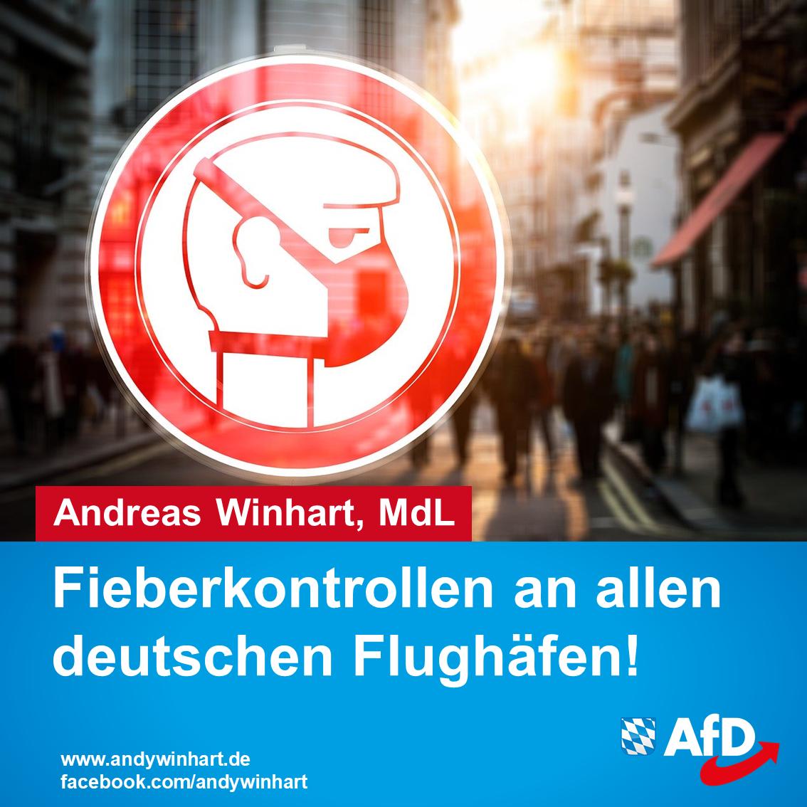 AfD fordert Fieberkontrollen an Flughäfen