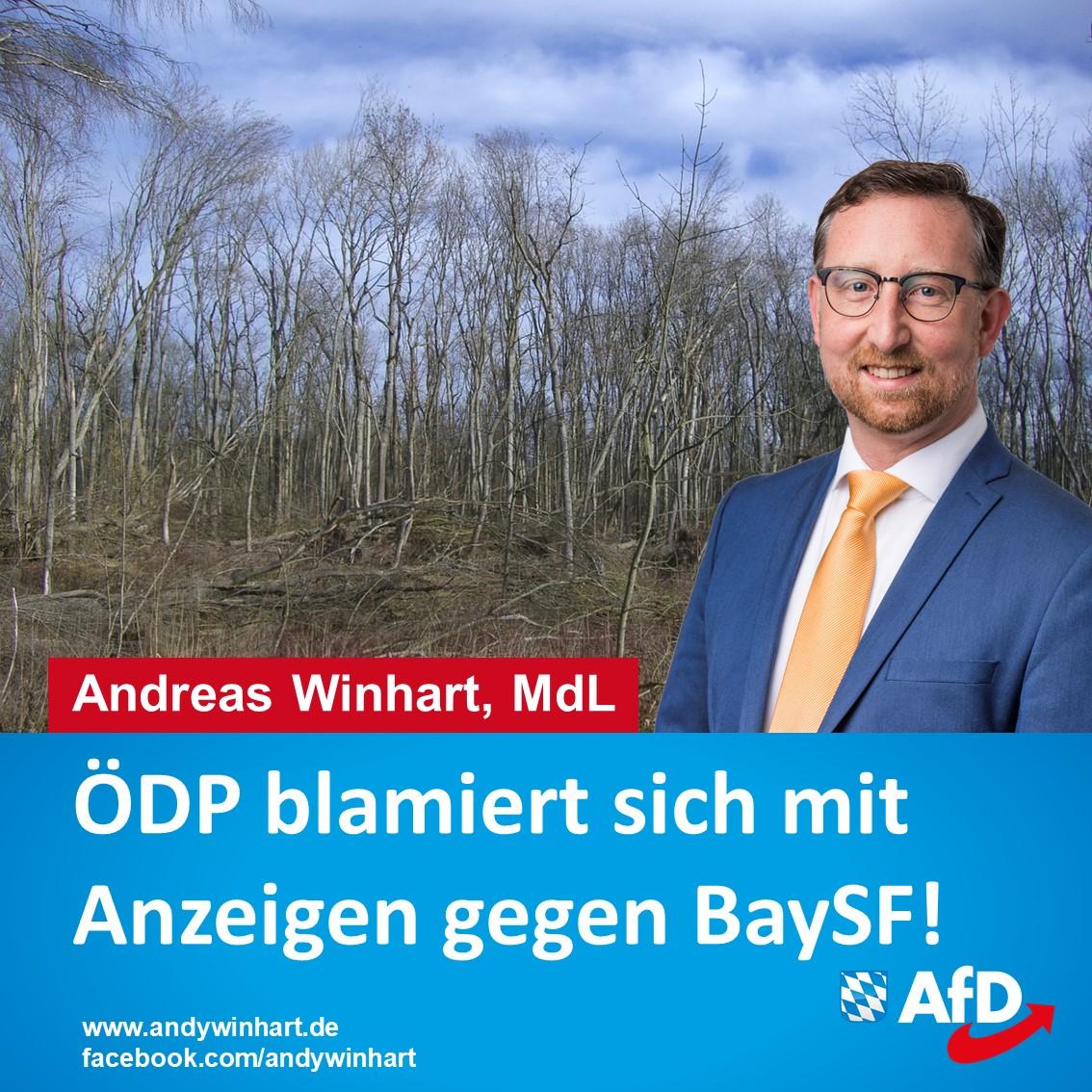 AfD-Landtagsabgeordneter kritisiert ÖDP Anzeige gegen BaySF