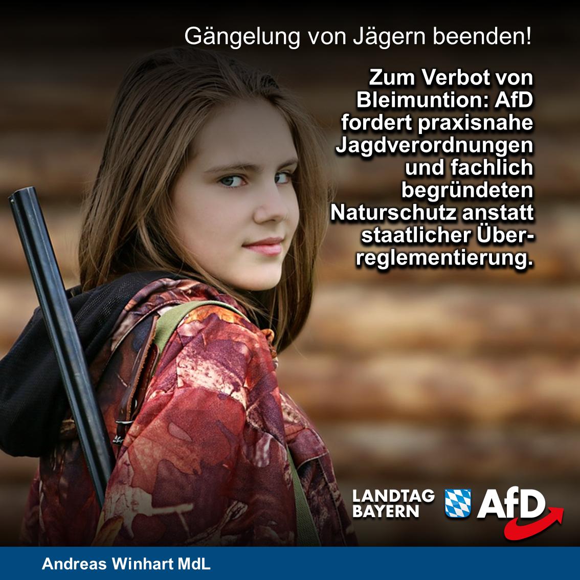 Verbot von Bleimunition: AfD-Abgeordnete fordern praxisnahe Jagdverordnungen und fachlich begründeten Naturschutz